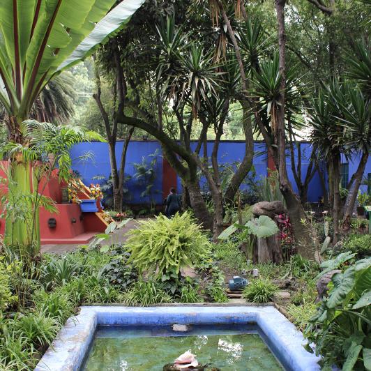 Frida_garden