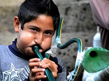 These Veracruz Kids Couldn't Afford Instruments, So They Made Some Out of Trash
