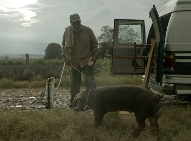 Clip: A Look at Diego Luna's 'Mr. Pig,' Starring Danny Glover and Maya Rudolph