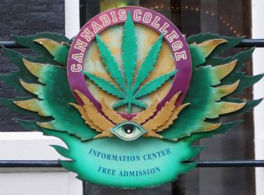 This Colorado County Will Send Low-Income Latinos to College Using Weed Scholarships