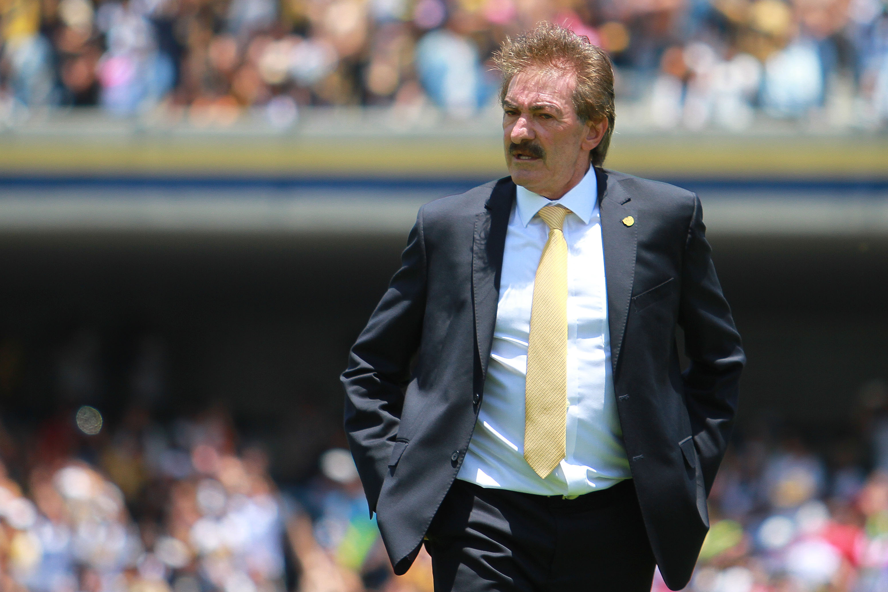 Ricardo La Volpe Could Be On H...