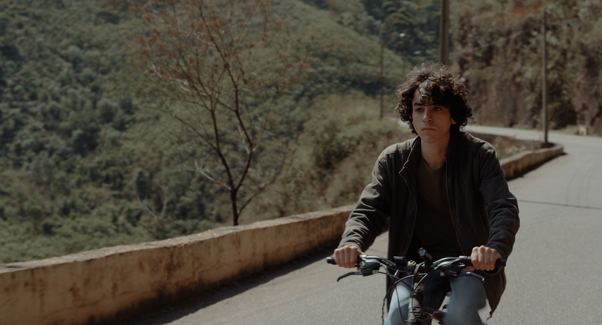 It's Official: Brazil, Argentina, and Venezuela Produced the Best Latin American Films of 2017