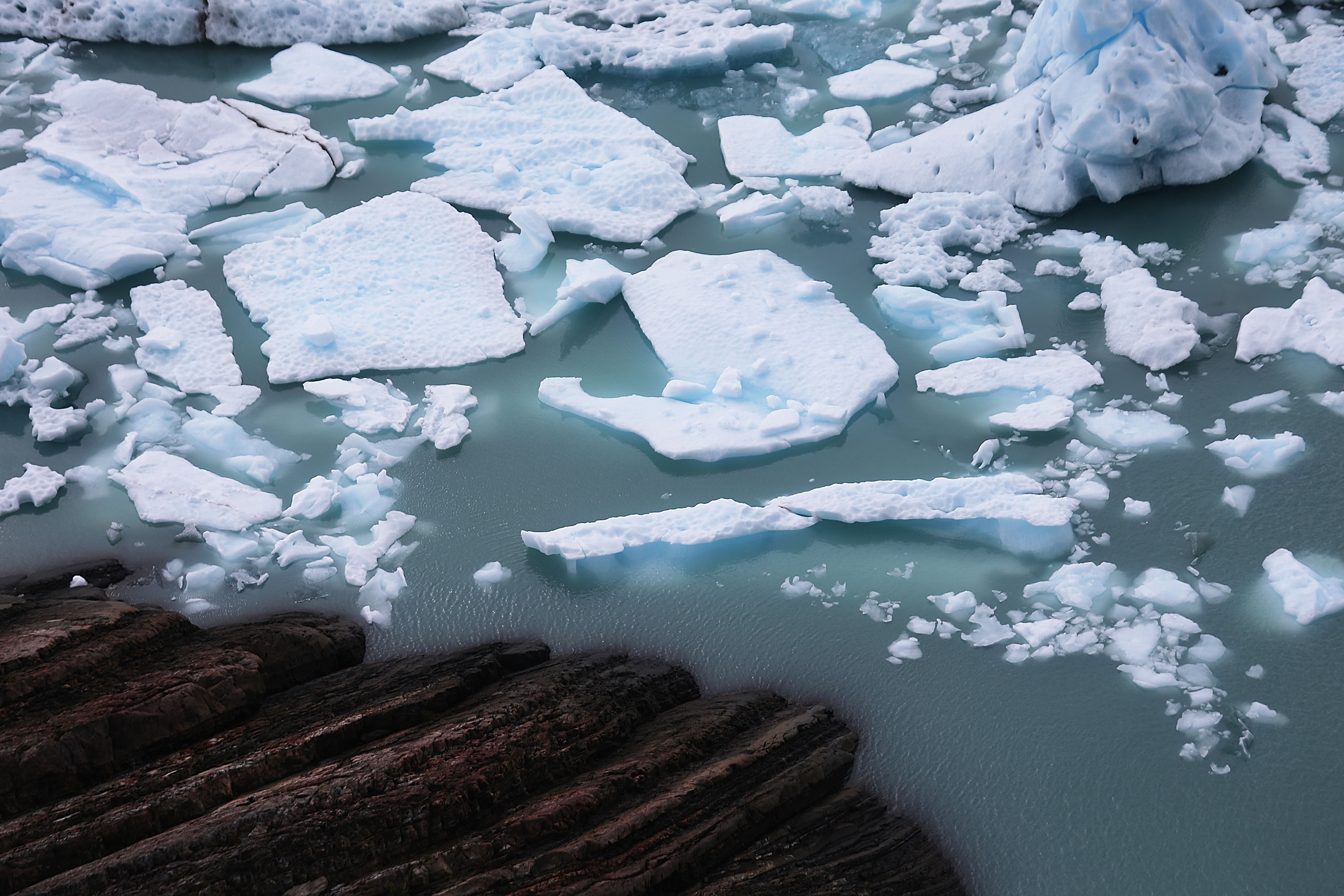 Yale Study Finds That No One Is As Actively Engaged With Climate Change as Latinos