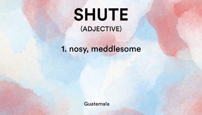 shute