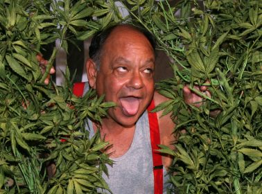 Cheech Marin Recently Launched His Own Pot Brand