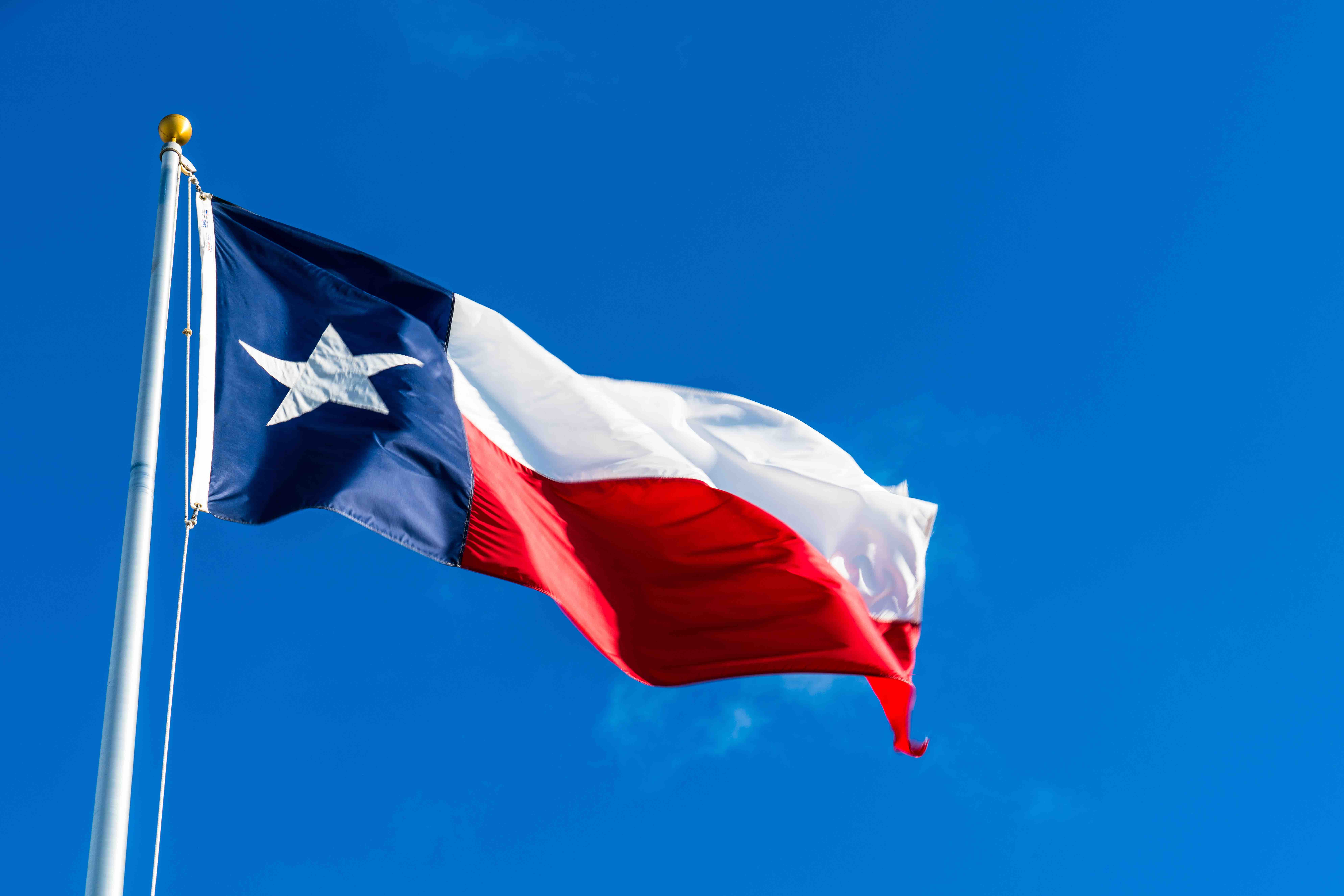 Texas Commissioner Apologizes for Telling County Judge to Speak English