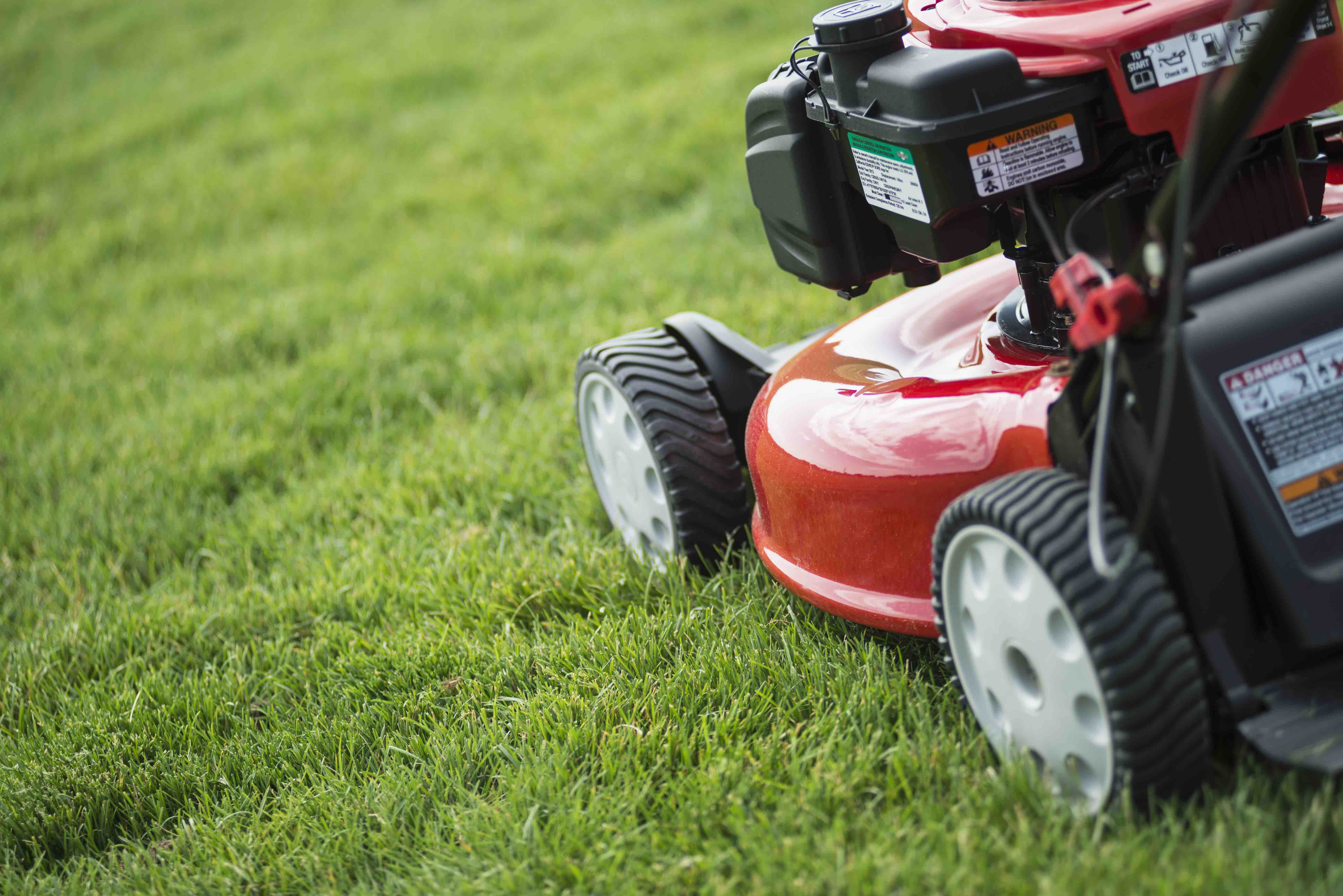 Texans Are Leaving Negative Reviews of Mowing Company That Distributed Racist Fliers