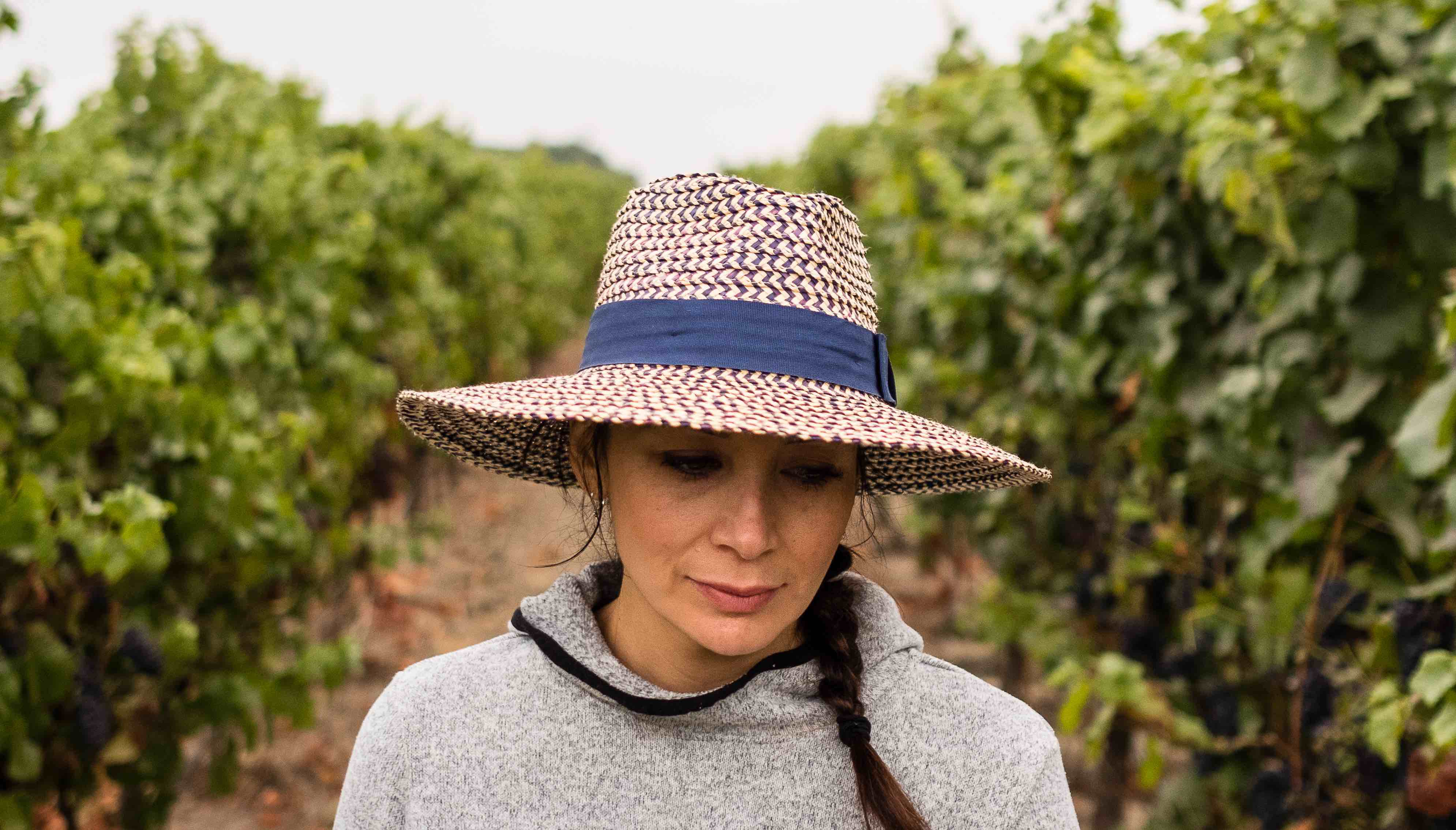 REVIEW: 'Harvest Season' Documentary Portrays Latinos Behind Wine Labels