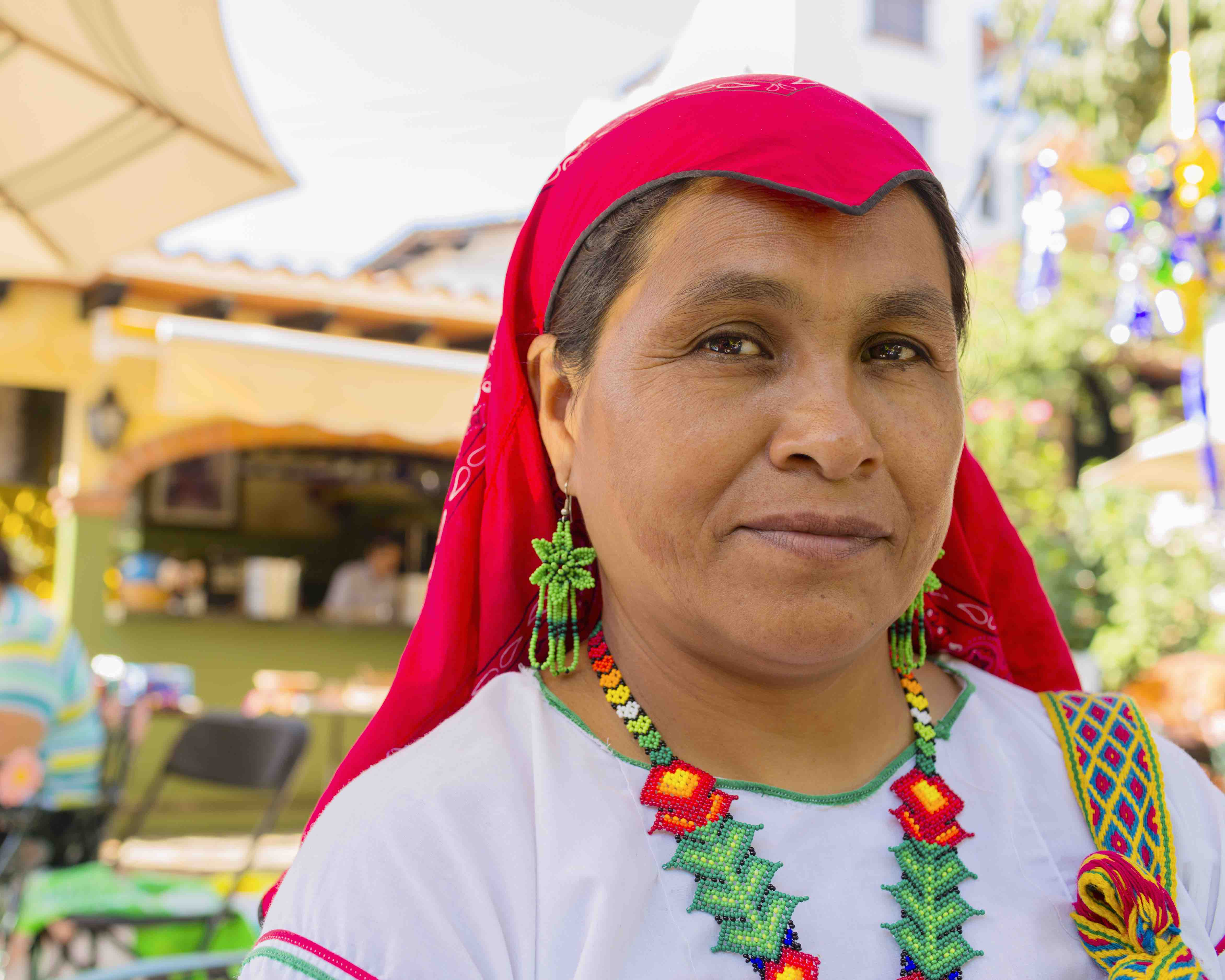 Mexico's New National Institute to Guarantee Rights of Indigenous Groups & Afro-Mexicans