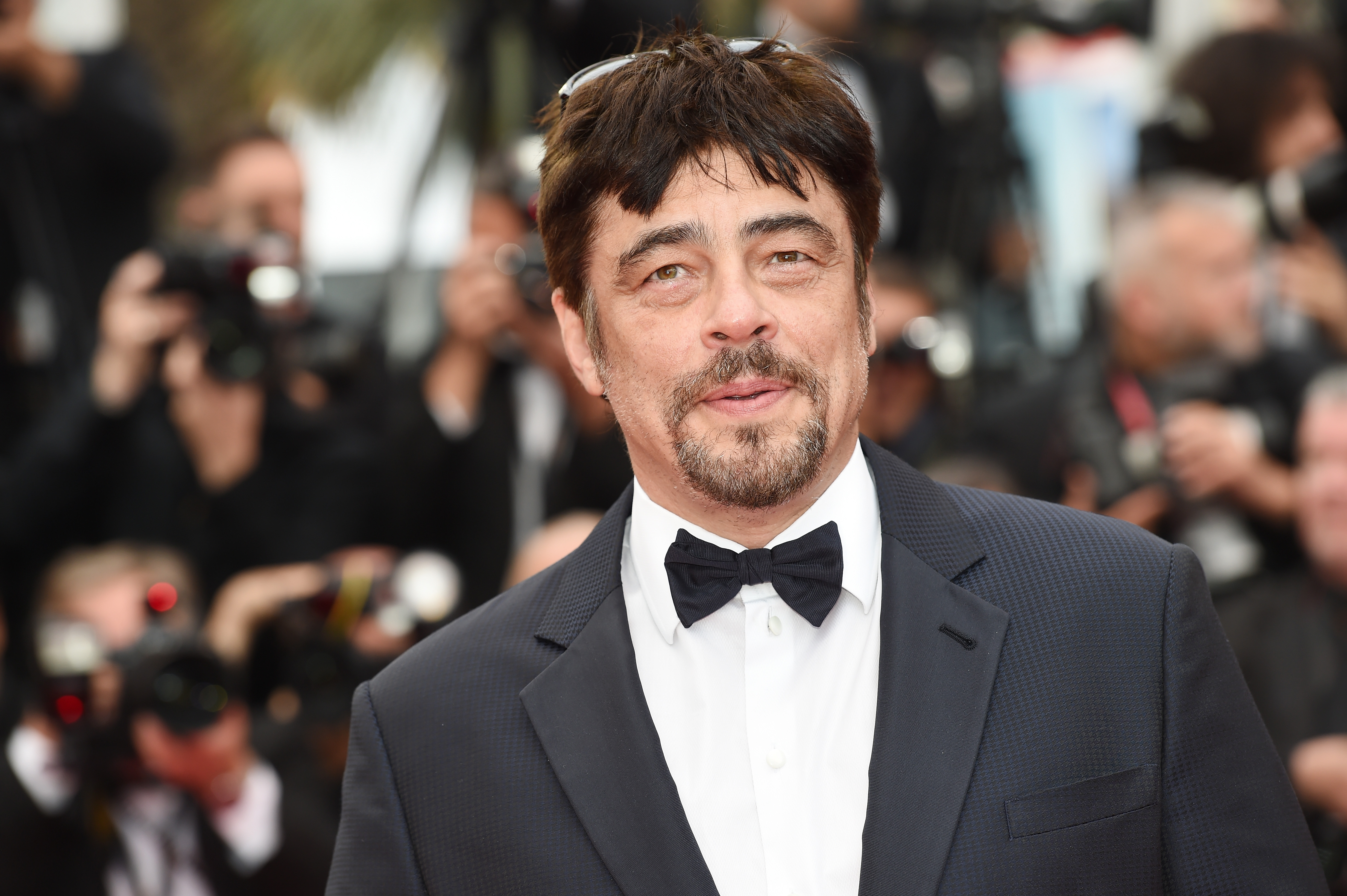 Benicio Del Toro Joins Live-Action 'Dora the Explorer' Movie as its Main Villain, Swiper