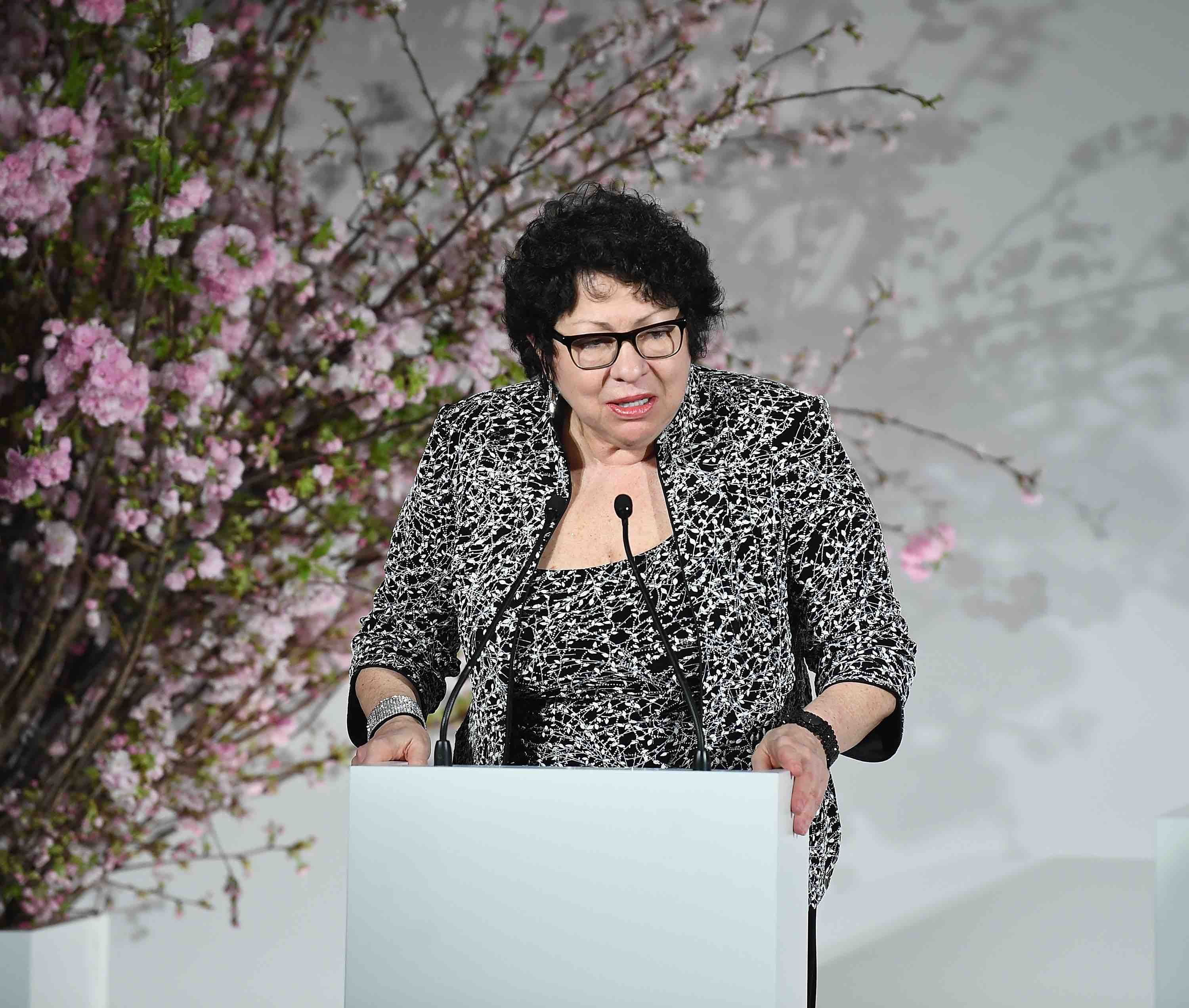 Sonia Sotomayor Will Be a Guest at the 2nd Annual Bronx Book Festival
