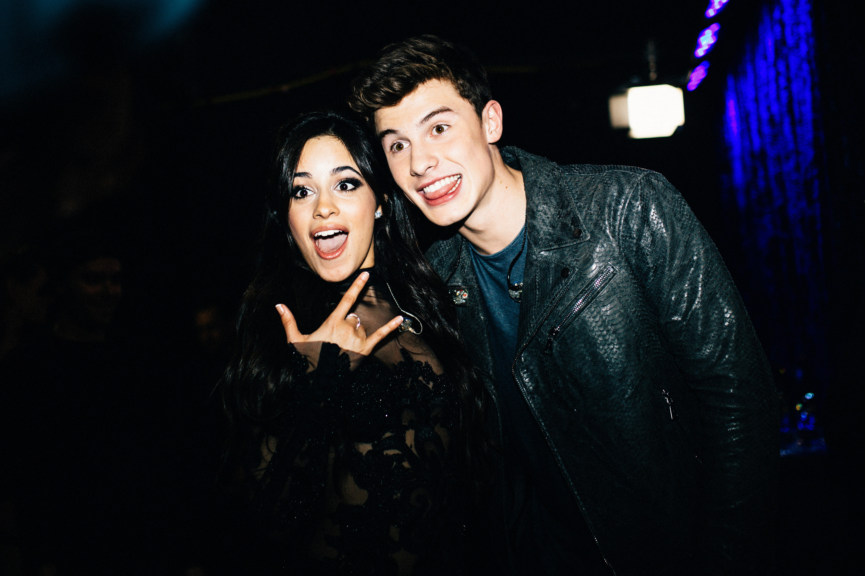 Camila Cabello Really, Really Wanted Shawn Mendes to Know She Was at His Concert