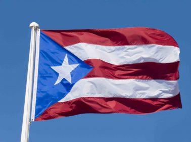 Puerto Rico's SanSe Festival Is Still On Despite Artists' Safety Concerns
