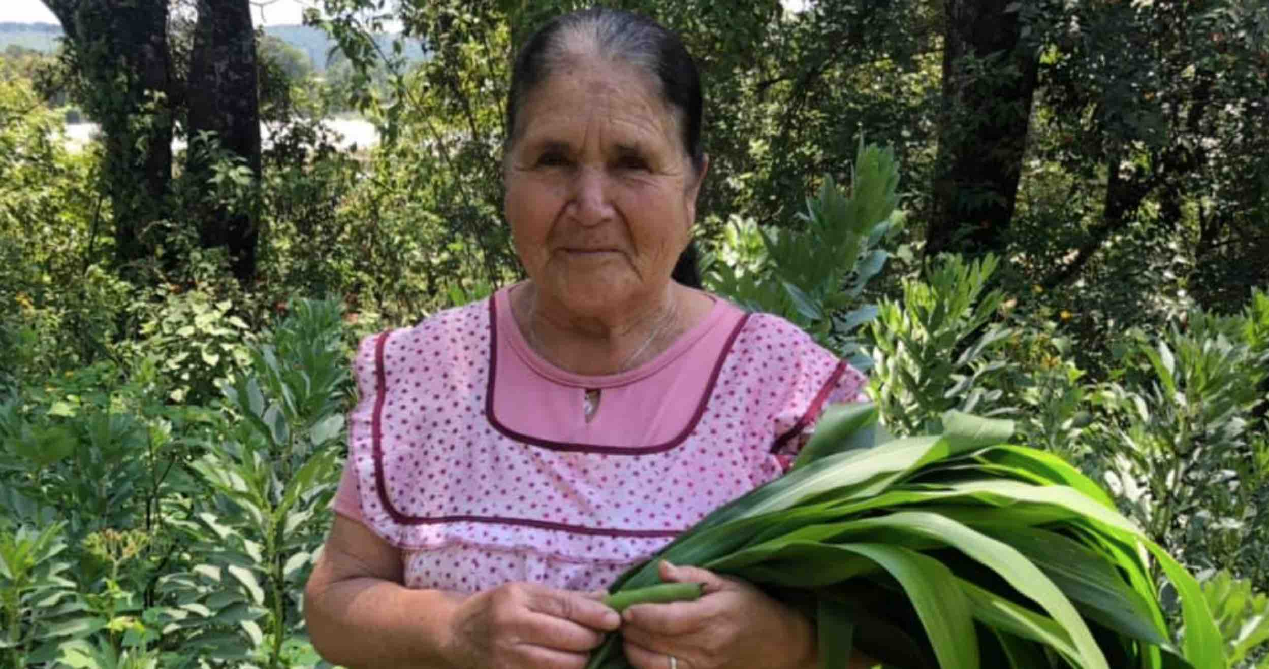 Abuelita Behind De Mi Rancho A Tu Cocina Is A Youtube Star