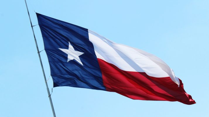 In Texas, an Afro-Latina Politician Is Under Fire for Calling a Colleague the N-Word