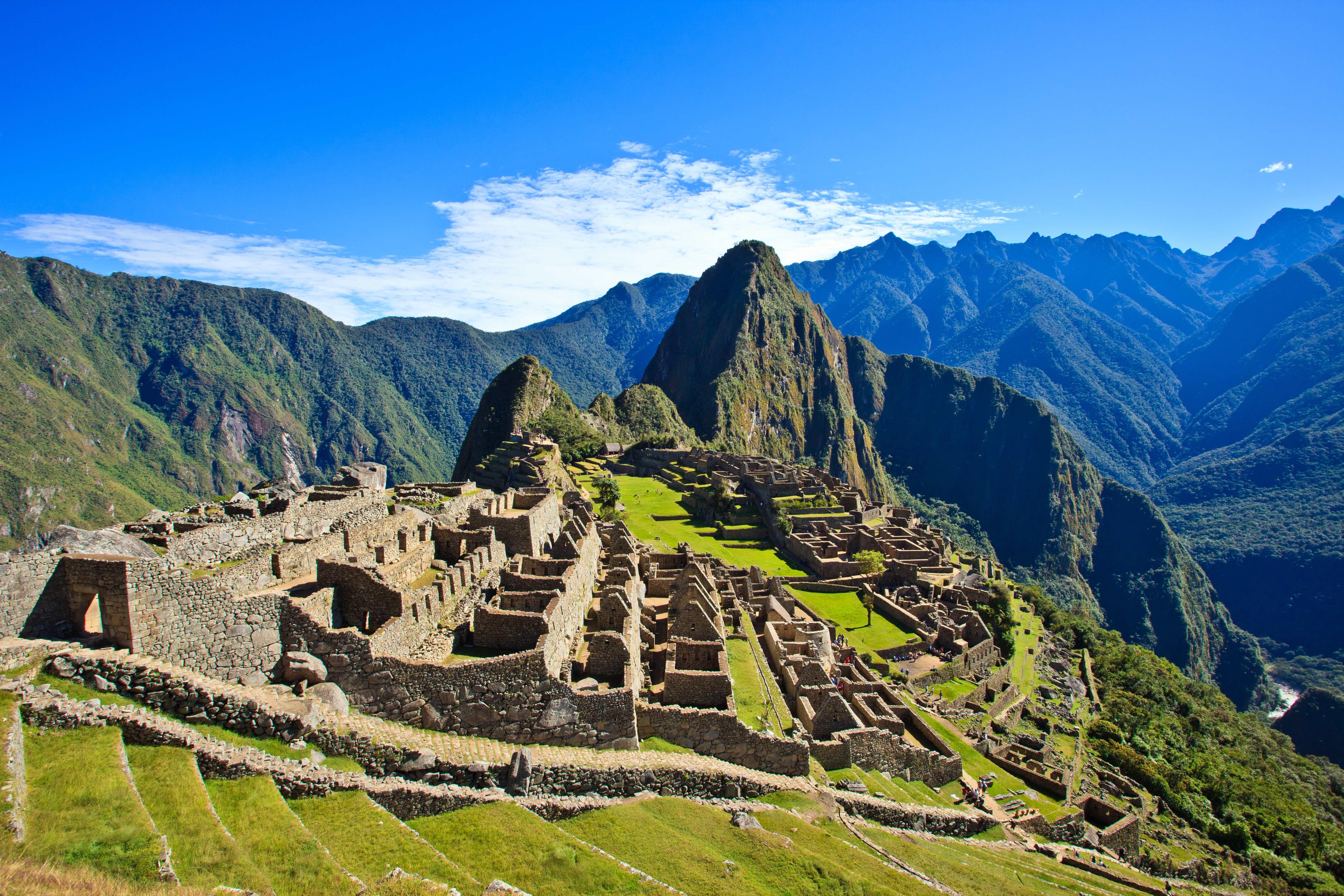 Peru Aims to Plant 1 Million Trees Around Machu Picchu